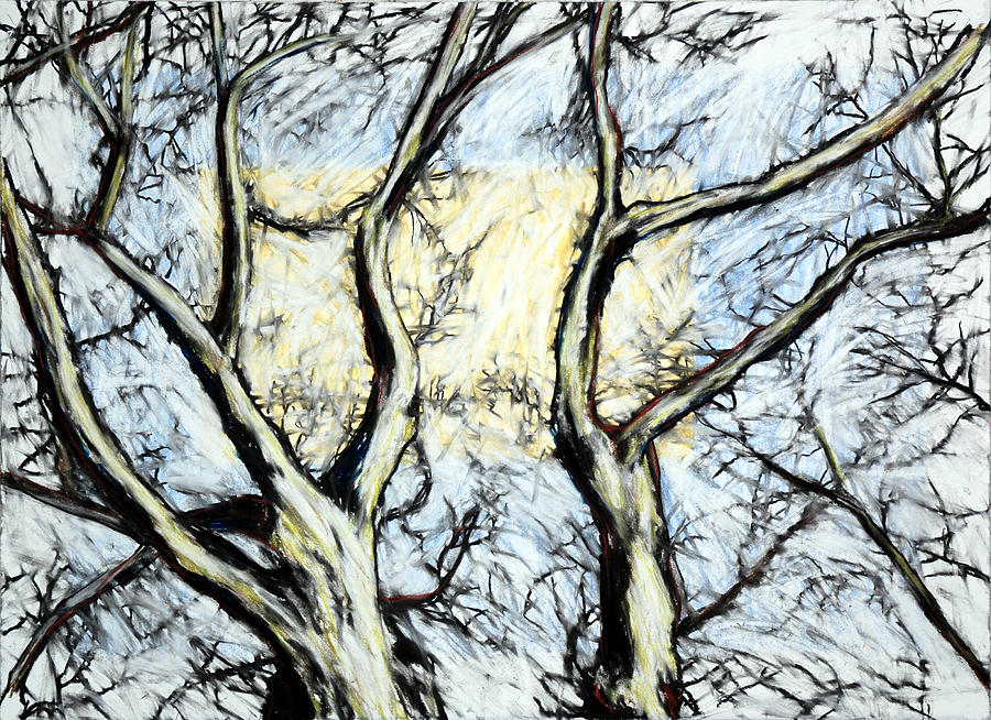 Tree Drawing - Tree With Rectangle Sun by John Terwilliger