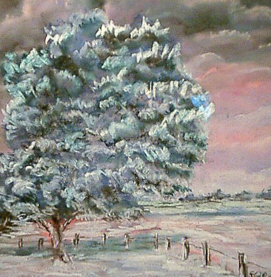 Tree With Snow In Normandy Painting by Dick Stolp