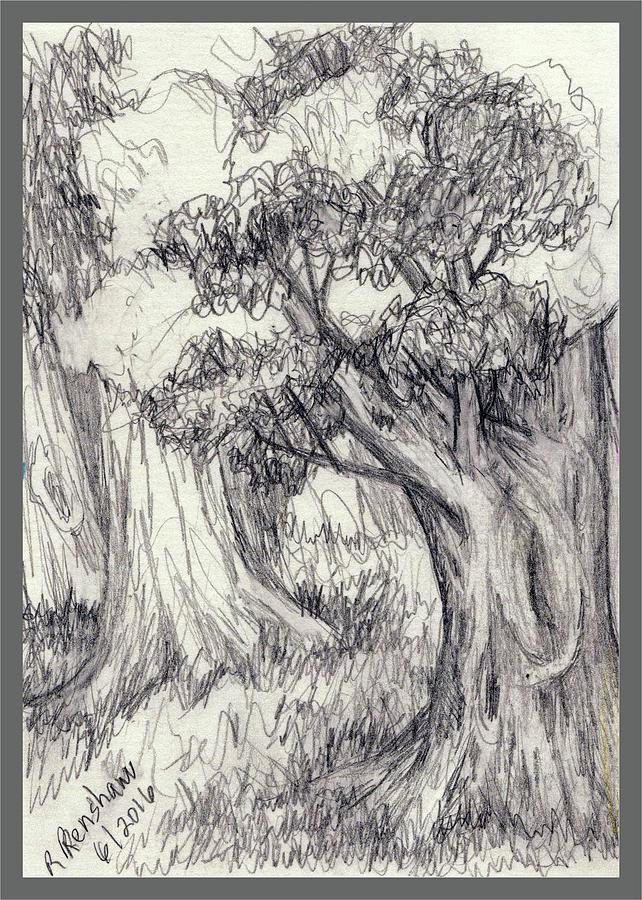 Pencil Drawing - Trees 2 by Ruth Renshaw