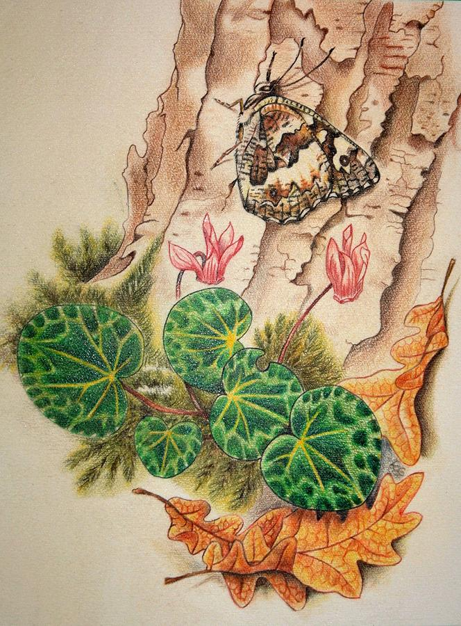 Butterfly Drawing - Trees Butterfly by Roberta Ponte