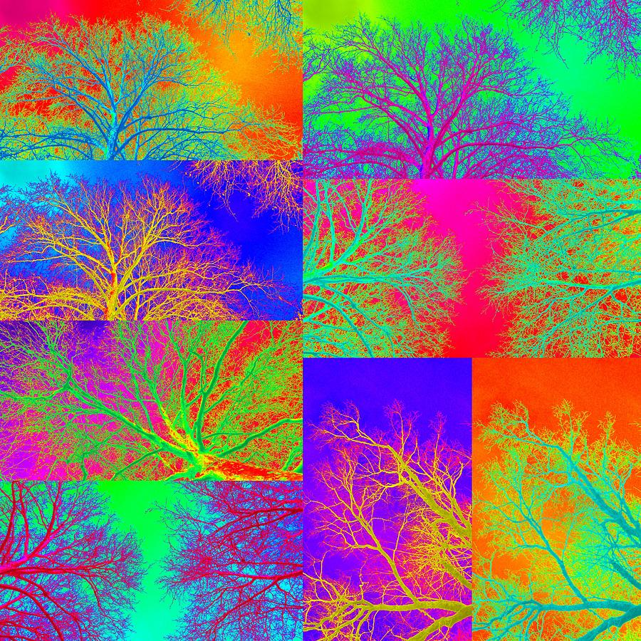 Trees Of Life Digital Art