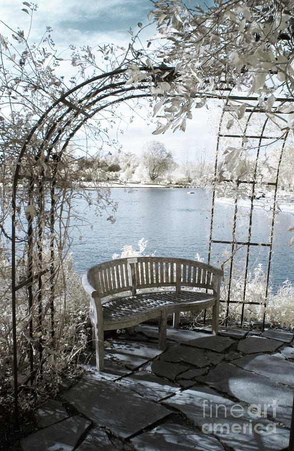 Trellis Bench in Infrared by Crystal Nederman