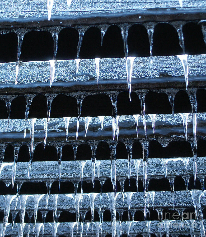 Ice Photograph - Trellis Ice by Steve Rudolph