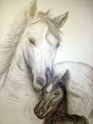 Horse Drawing - Trender Loving Care  by Donald Penwell