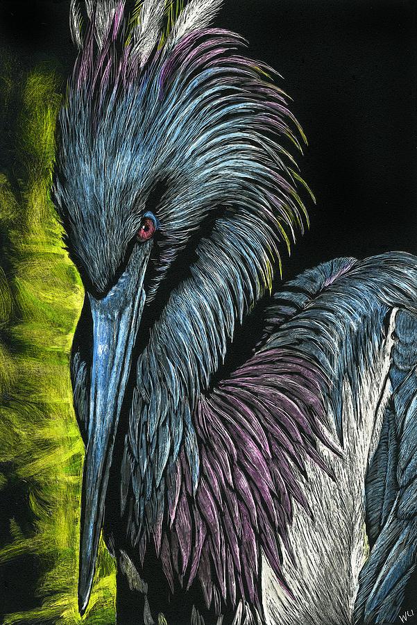 Tricolor Bird by William Underwood