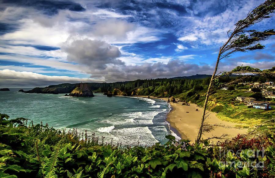 Trinidad State Beach by Paul Gillham
