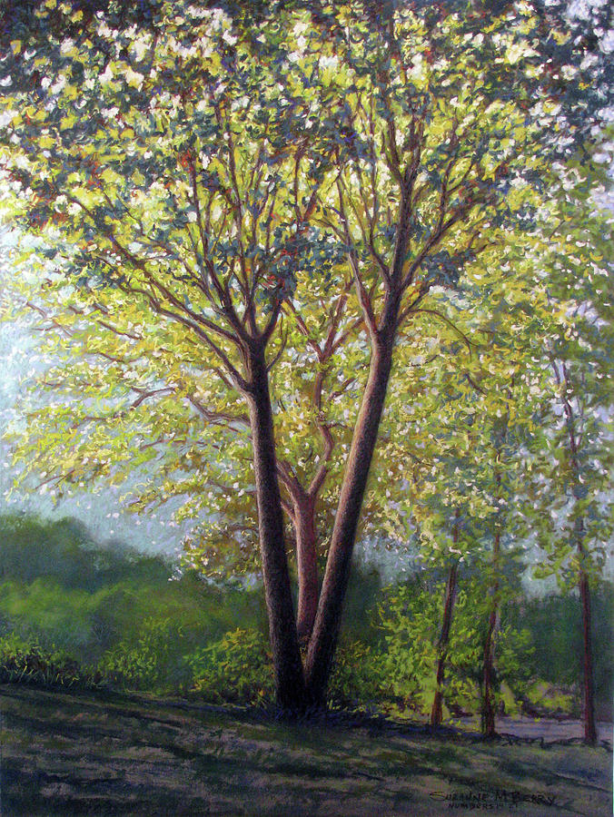 Landscape Pastel - Trinity...i See God Everywhere by Suzanne Berry