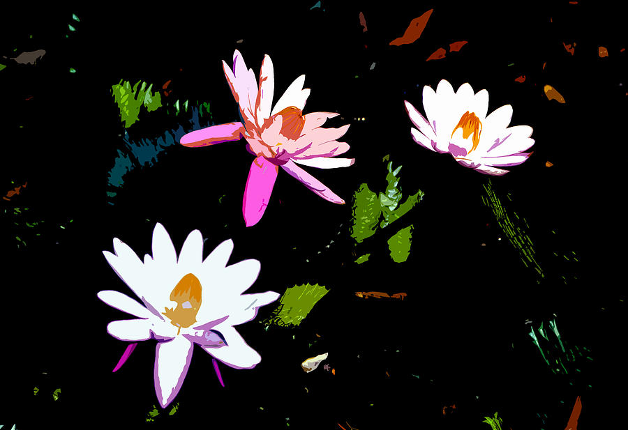 Flowers Painting - Triple Beauties by David Lee Thompson