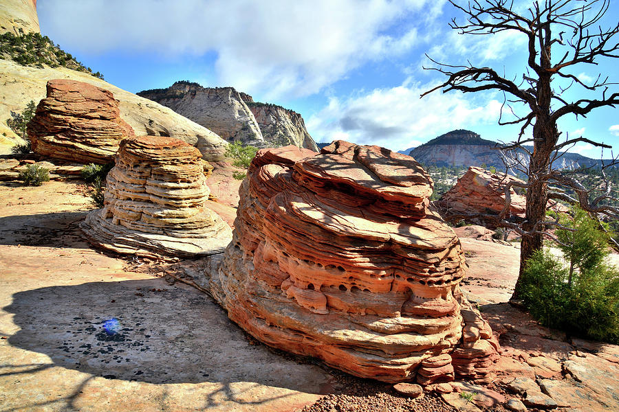 Zion National Park Photograph - Triple Beehives by Ray Mathis