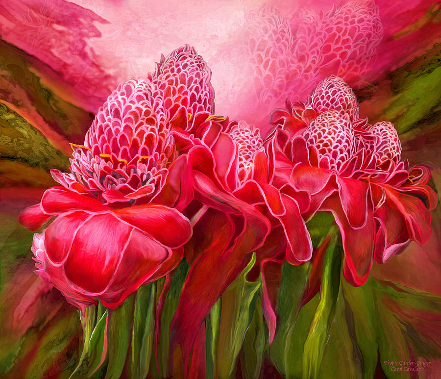 Tropic Garden - Torch Ginger by Carol Cavalaris