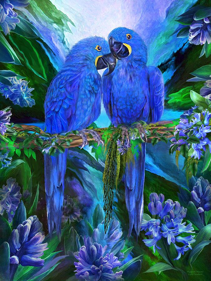 Tropic Spirits - Hyacinth Macaws by Carol Cavalaris
