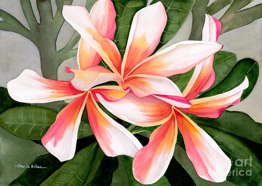 Tropical Beauty - Plumeria Watercolor by Hao Aiken