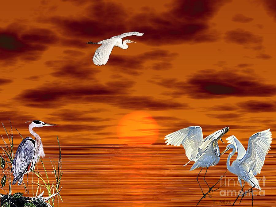Egret Digital Art - Tropical Birds And Sunset by Terri Mills