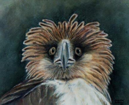 Bird Painting - Tropical Eagle by Carmen Durden