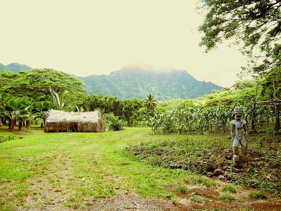 Farm Photograph - Tropical Farm by Halle Treanor