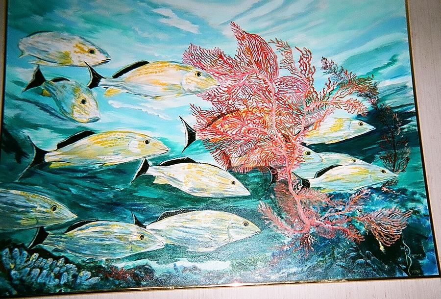 Fish Painting - Tropical Fish And Coral by Lulu Brymer