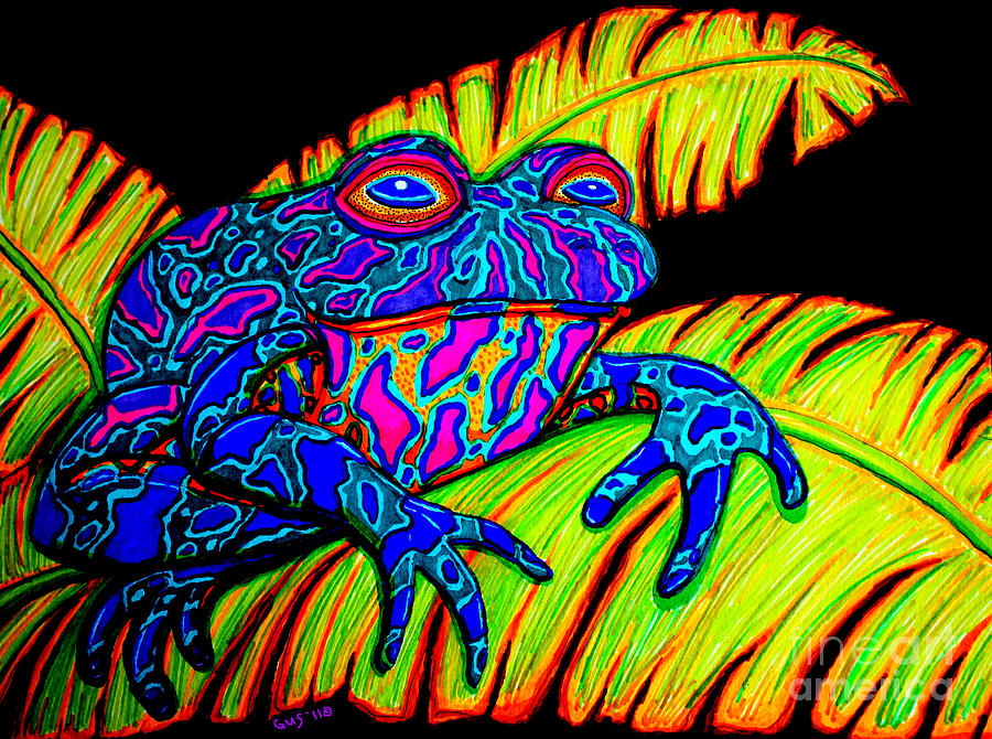Frog Drawing - Tropical Frog by Nick Gustafson