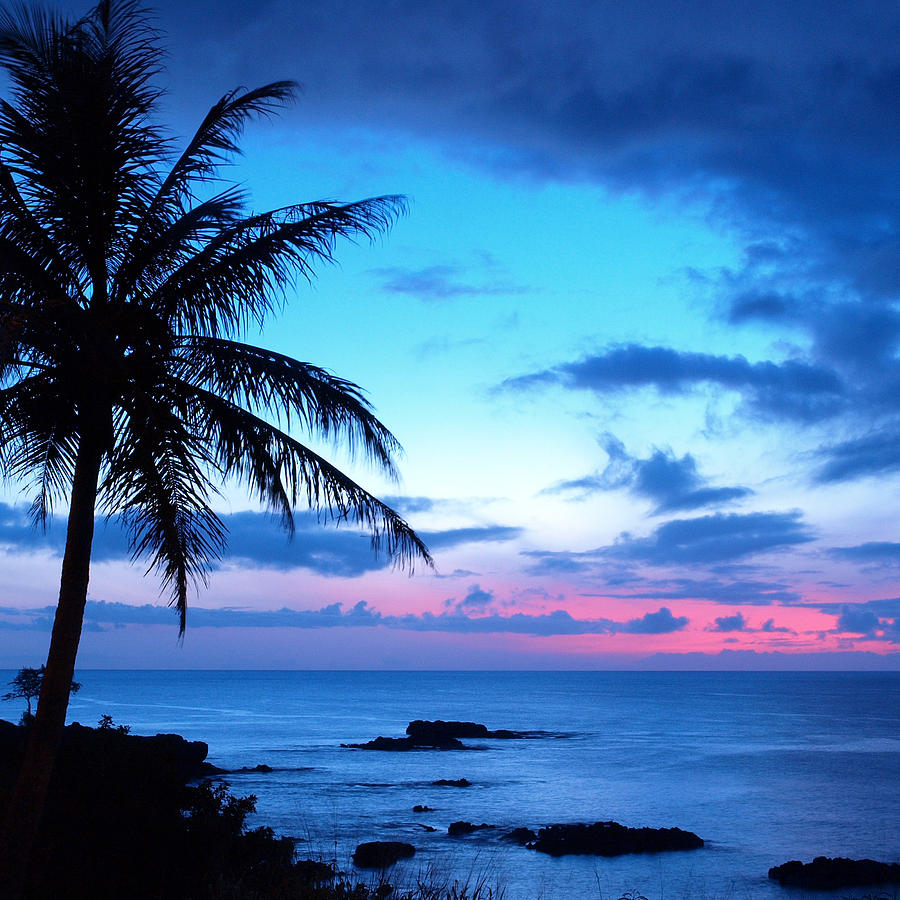 Island Beach Sunset: Tropical Island Pretty Pink Blue Sunset Landscape