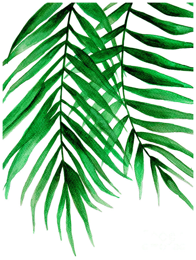 Tropical Leaf Ii Painting By Pdfdecor Wall Art Green leaf wall art tropical plant leaves canvas pictures minimalism contemporary watercolor painting prints artwork for bedroom bathroom living room wall decor 12 x 16 x 3 pieces. tropical leaf ii by pdfdecor wall art