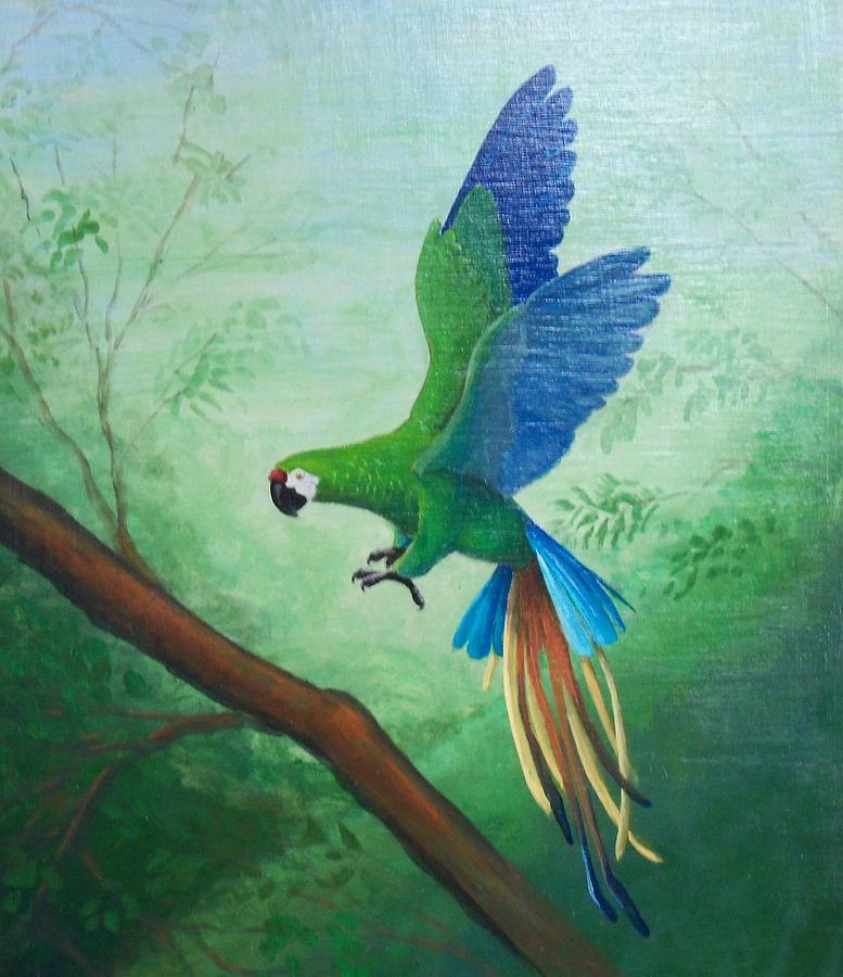 Tropical Painting - Tropical Macaw Landing by William Patterson
