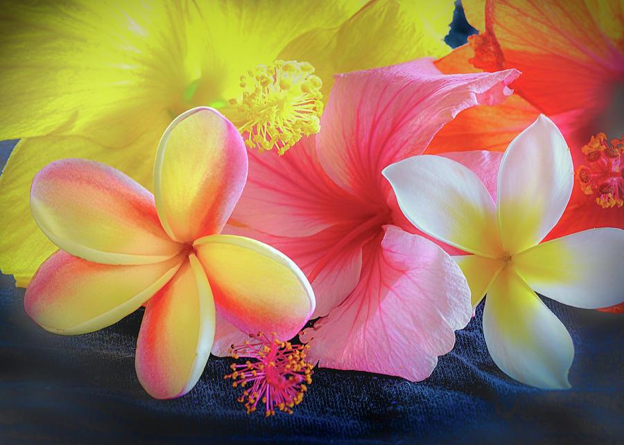 Tropical Melange by Jade Moon