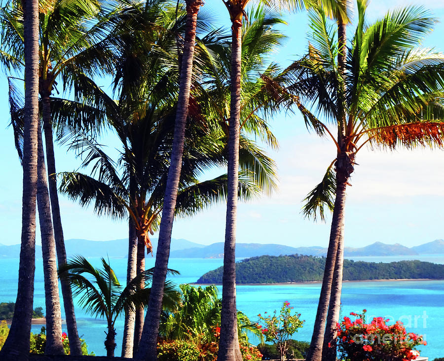 Feng Shui Photograph - Tropical Paradise by Eluv