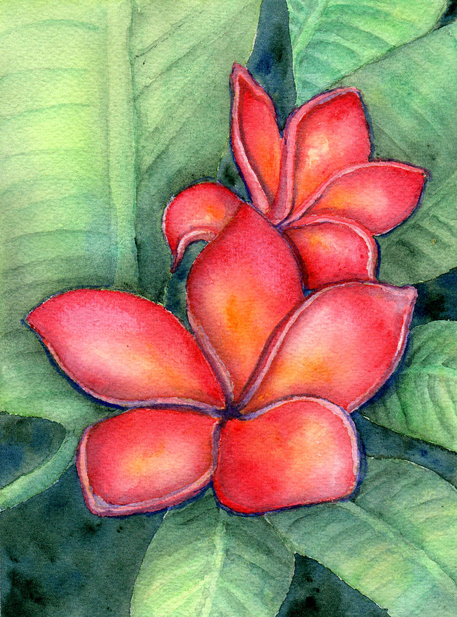 Tropical Plumeria Painting by Elizabeth Oertel