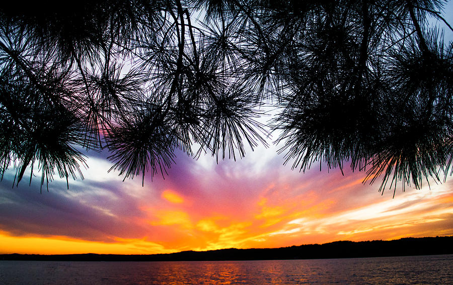 Tropical Sunset Photograph - Tropical Sunset  by Parker Cunningham