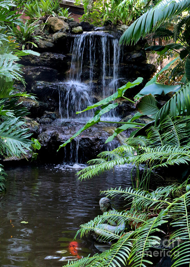 Tropical Waterfall With Koi Pond Photograph By Carol Groenen