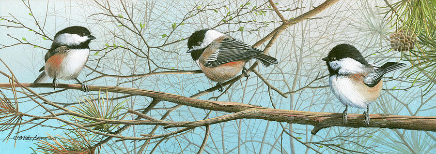 Black Capped Chickadee Painting - Troublesome Trio by Mike Brown