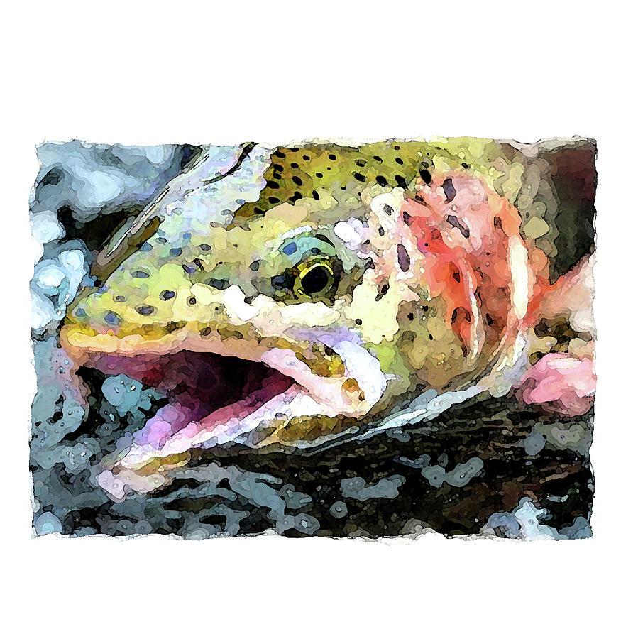 Trout 1 by Brenda Leedy