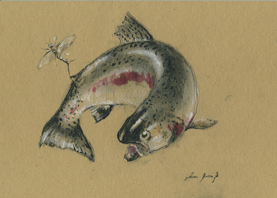 Fly Fishing Painting - Trout Eating by Juan Bosco