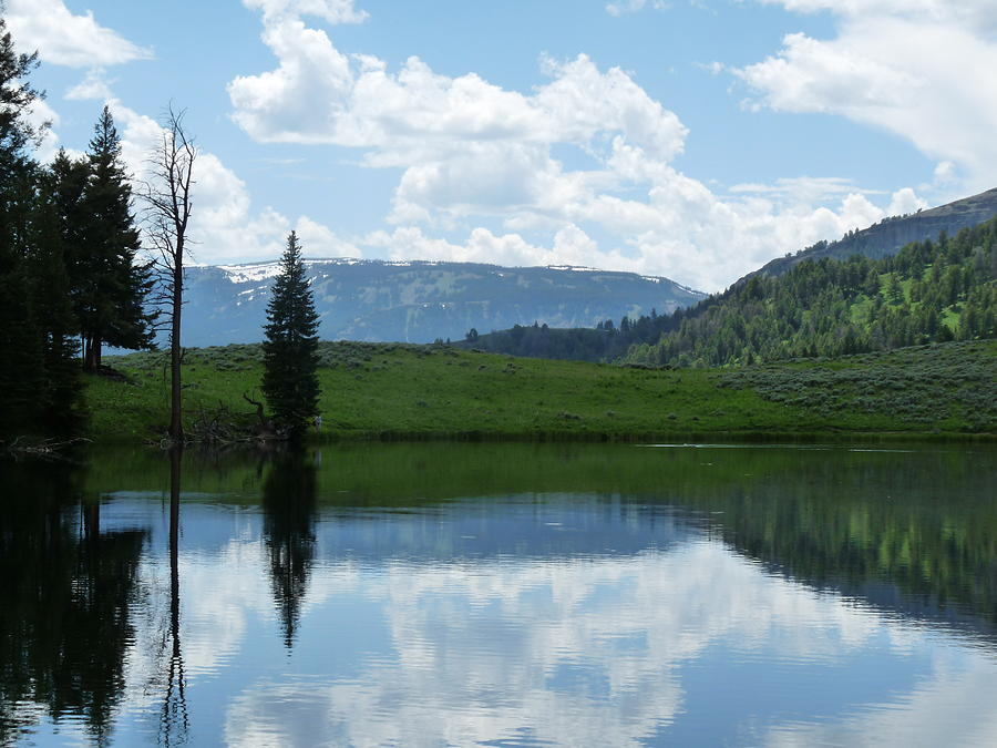 Water Photograph - Trout Lake by Chad Hinckley