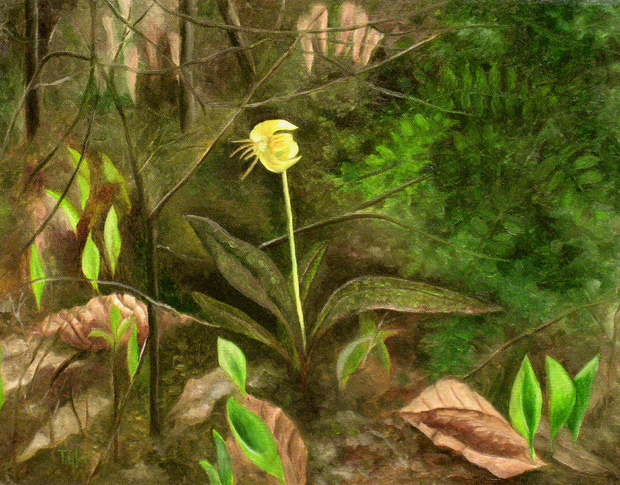Flowers Painting - Trout Lily by FT McKinstry
