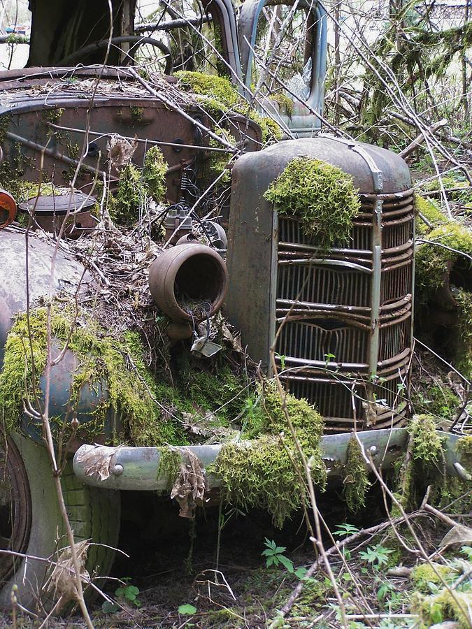 Truck Photograph - Truck Grill by Gene Ritchhart