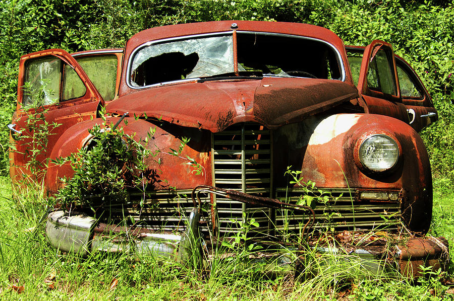 Ford Photograph - Truck In Meadow II by Amy Maros