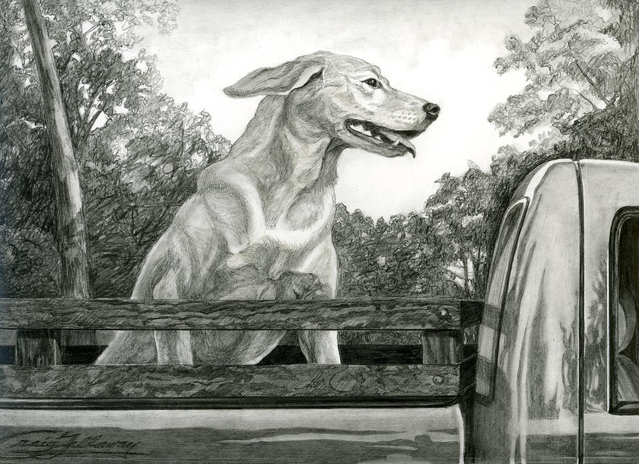 Dog Painting - Truck Queen Study by Craig Gallaway