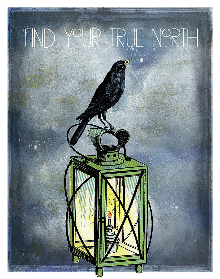 Night Digital Art - True North Crow Sits On The Night Lantern by Sandra McGinley