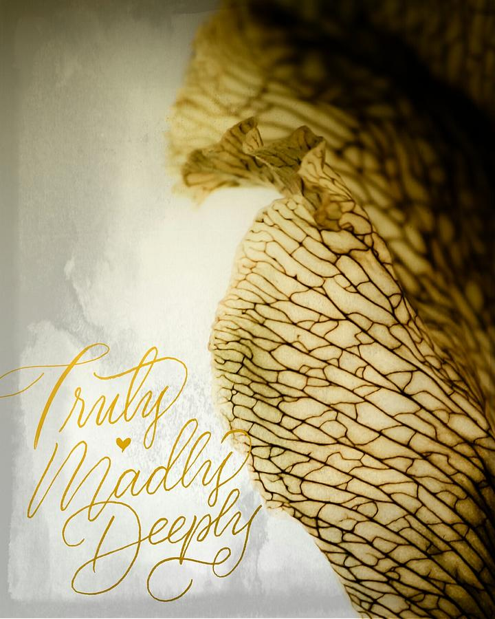 Truly Madly Deeply by Bobby Villapando
