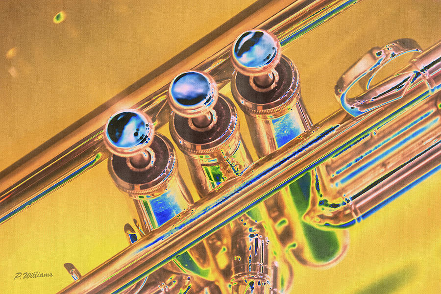 Trumpet Keys Digital Art
