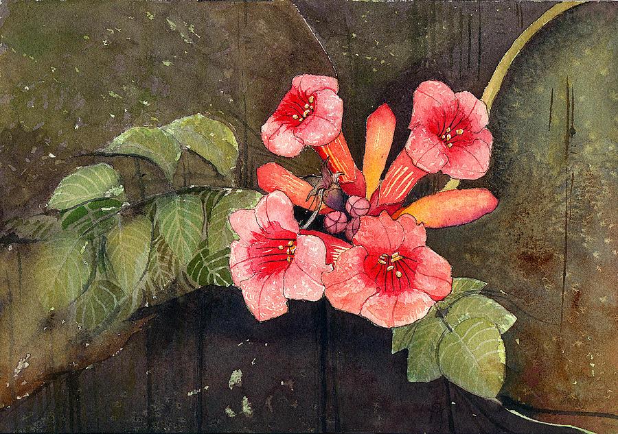 Trumpet Vine Painting - Trumpet Vine II by Katherine Miller