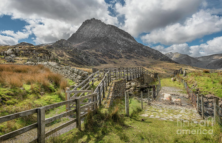 Tryfan Photograph - Tryfan And The Ogwen Valley by Adrian Evans