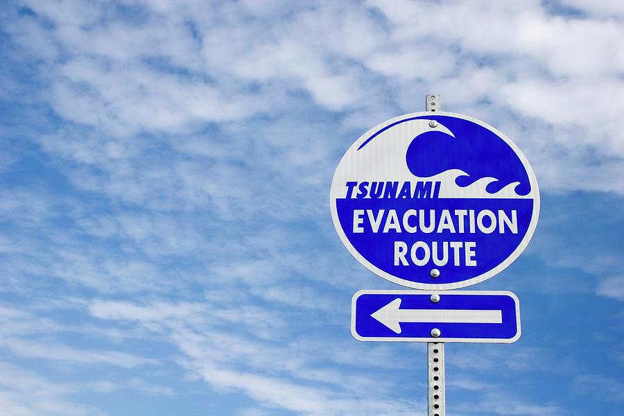 tsunami evacuation route sign photograph by carol leigh