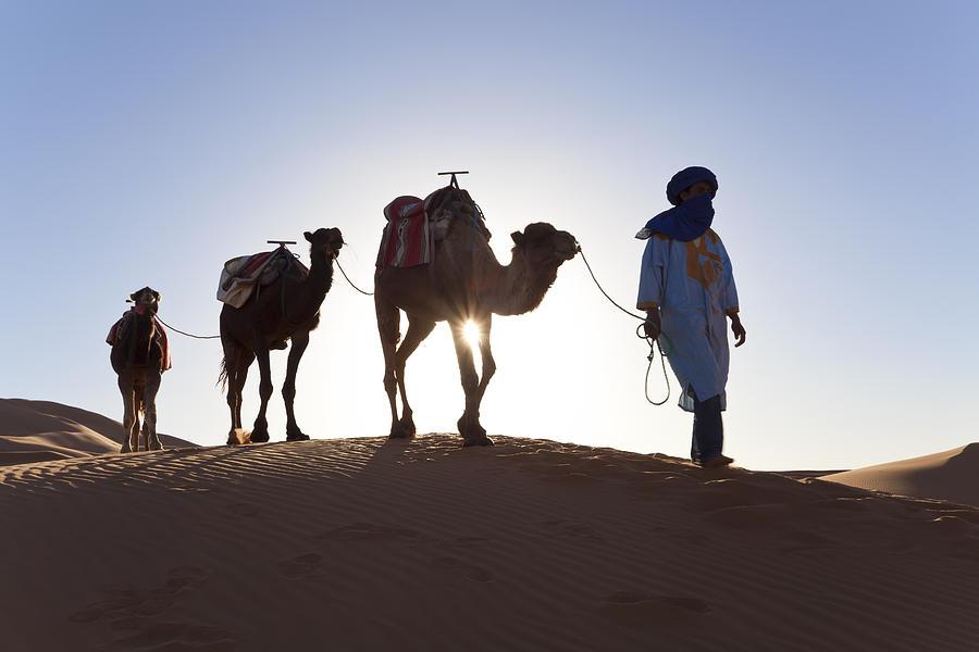 Adult Photograph - Tuareg Man With Camel Train, Sahara Desert, Morocc by Peter Adams