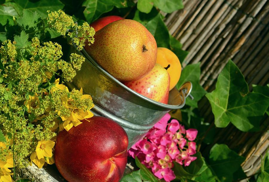 Fruit Photograph - Tub Of Apples by Carlene Smith