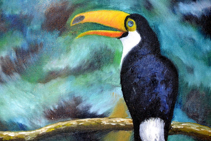 Tucan Painting - Tucan by Zuzana Perner