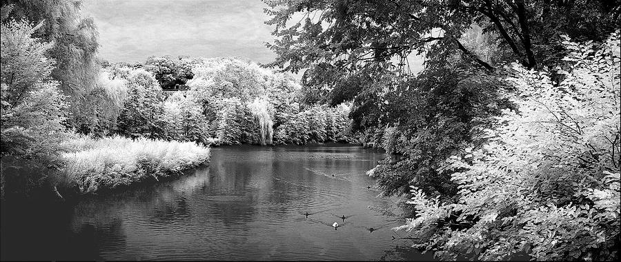 Infrared Photograph - Tuckahoe Lake Infrared by Turhan Von Brandon