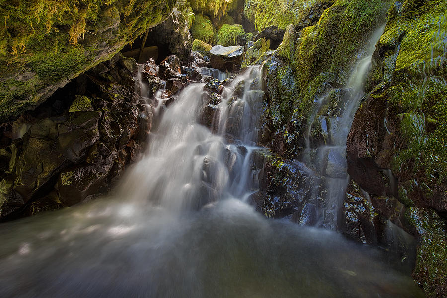 Waterfall Photograph - Tucked Away In Gorton Creek by David Gn