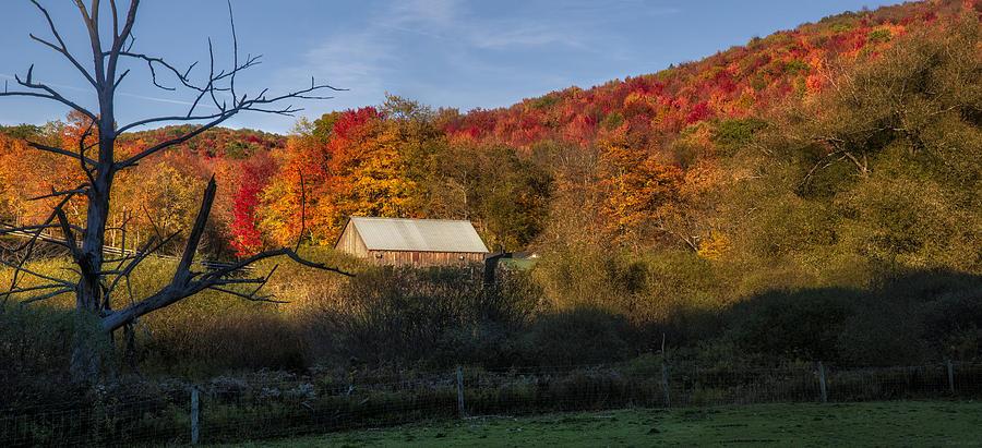 Fall Photograph - Tucked Away by Mark Papke