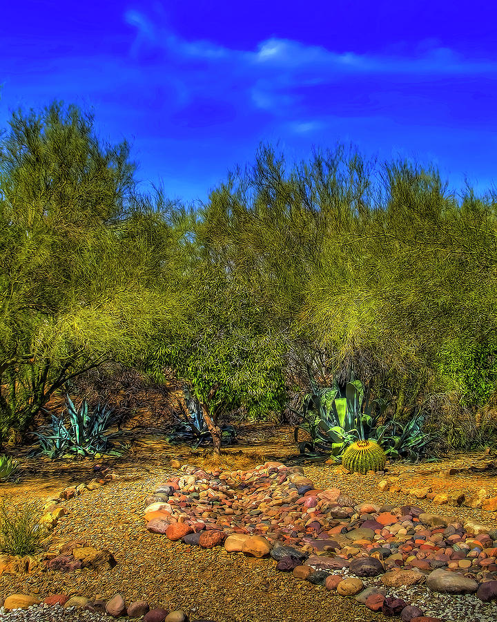 Tucson Flora by Gordon Engebretson